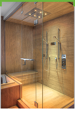 Vision Frameless Swing Shower System